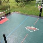 Minnesota Wild Themed Multi Purpose Game Court